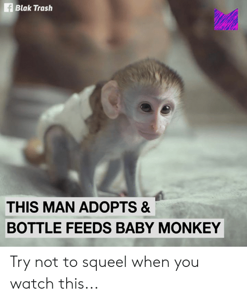 Memes, Trash, and Monkey: f Blak Trash  THIS MAN ADOPTS &  BOTTLE FEEDS BABY MONKEY Try not to squeel when you watch this...