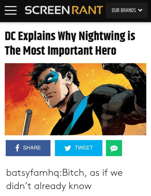 Bitch, Target, and Tumblr: F SCREENRANT OUR BRANDS  DC Explains Why Nightwing is  The Most Important Hero  SHARE  TWEET batsyfamhq:Bitch, as if we didn't already know