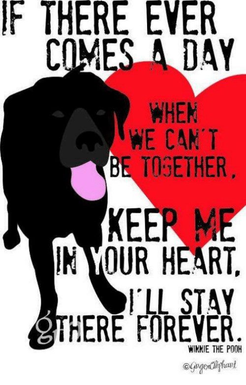 winny: F THERE EVER  COMES A DAY  WHEN  WE CAN'T  BE TOGETHER  OUR HEART  I LL STAY  aiTHERE FOREVER  WINNIE THE P00H  an