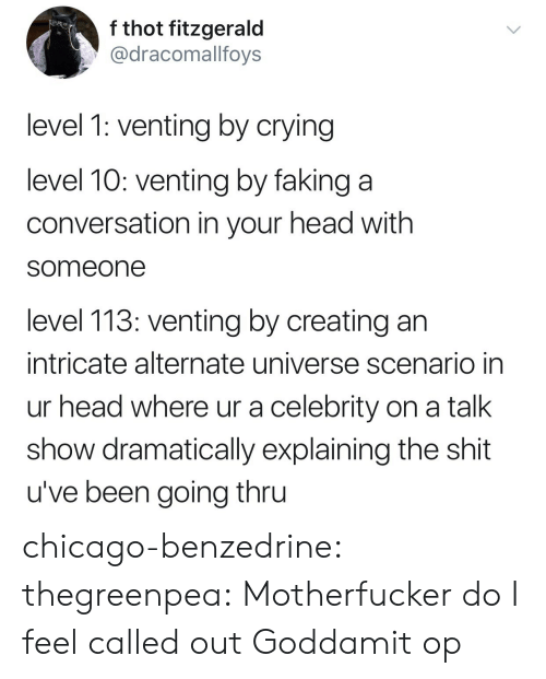 celebrity: f thot fitzgerald  @dracomallfoys  level 1: venting by crying  level 10: venting by faking a  conversation in your head with  someone  level 113: venting by creating an  intricate alternate universe scenario in  ur head where ur a celebrity on a talk  show dramatically explaining the shit  u've been going thru chicago-benzedrine: thegreenpea:  Motherfucker do I feel called out   Goddamit op