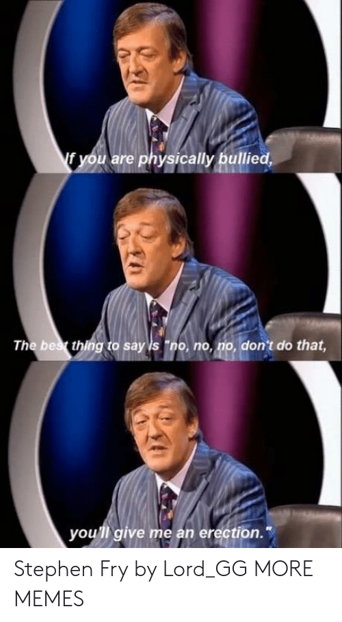 "Dank, Gg, and Memes: f you are physically bullied,  The bes thing to say is ""no, no, no, don't do that  you'll give me an erection. Stephen Fry by Lord_GG MORE MEMES"