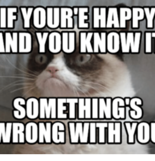 If You Re Happy And You Know It Go To Hell Lolcats Lol Cat