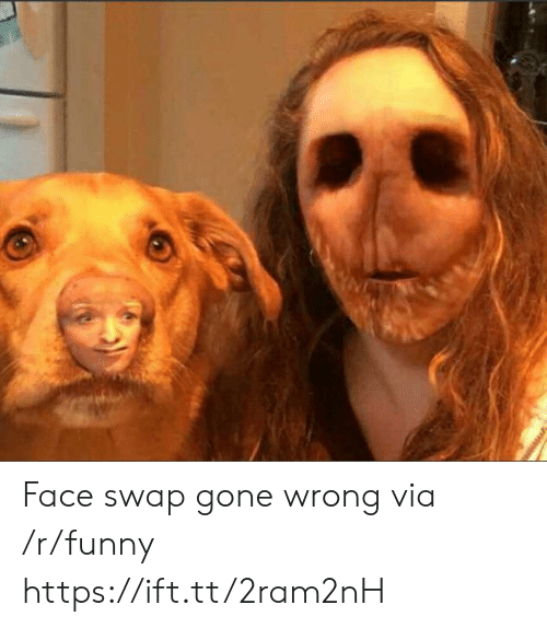 Gone Wrong: Face swap gone wrong via /r/funny https://ift.tt/2ram2nH