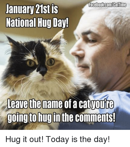 Facebookcom Cattime January 21st Is National Hug Day Leave The Name