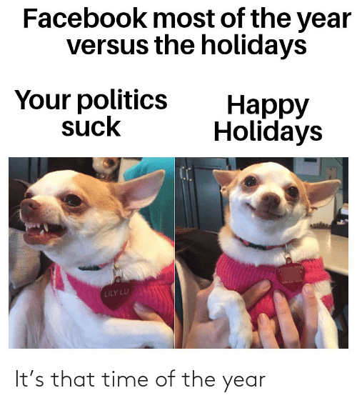 Facebook: Facebook most of the year  versus the holidays  Your politics  suck  Нарру  Holidays  LILY LU It's that time of the year