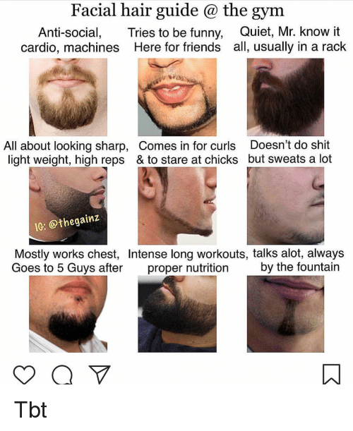 Friends, Funny, and Gym: Facial hair guide @ the gym  Anti-social, Tries to be funny, Quiet, Mr. know it  cardio, machines Here for friends all, usually in a rack  All about looking sharp, Comes in for curls Doesn't do shit  light weight, high reps & to stare at chicks but sweats a lot  IG: @thegainz  Mostly works chest, Intense long workouts, talks alot, always  Goes to 5 Guys after proper nutrition by the fountain Tbt