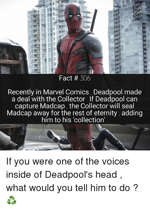 Head, Marvel Comics, and Memes: Fact 306  Recently in Marvel Comics, Deadpool made  a deal with the Collector. If Deadpool can  capture MadCap, the Collector will seal  Madcap away for the rest of eternity, adding  him to his collection' If you were one of the voices inside of Deadpool's head , what would you tell him to do ?♻️