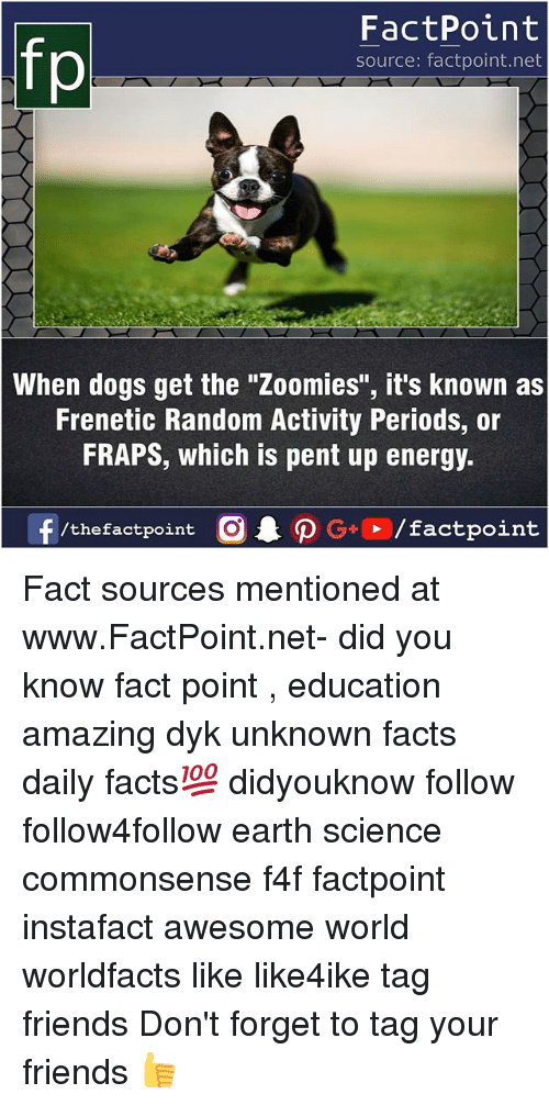 """Zoomies: FactPoint  source: factpoint.net  When dogs get the """"Zoomies"""", it's known as  Frenetic Random Activity Periods, or  FRAPS, which is pent up energy.  f/thefactpoint  G+/factpoint Fact sources mentioned at www.FactPoint.net- did you know fact point , education amazing dyk unknown facts daily facts💯 didyouknow follow follow4follow earth science commonsense f4f factpoint instafact awesome world worldfacts like like4ike tag friends Don't forget to tag your friends 👍"""