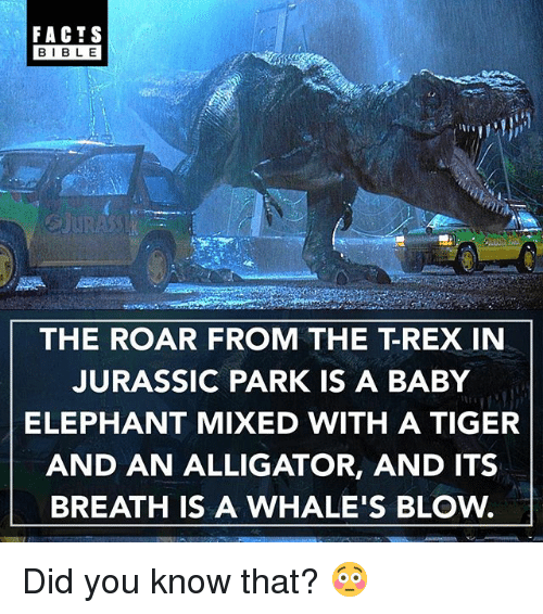 Bibled: FACTS  BIBLE  BIBL E  THE ROAR FROM THE T-REX IN  JURASSIC PARK IS A BABY  ELEPHANT MIXED WITH A TIGER  AND AN ALLIGATOR, AND ITS  BREATH IS A WHALE'S BLOw. Did you know that? 😳