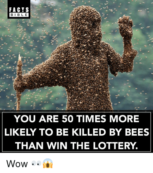 Bibled: FACTS  BIBLE  BIBL E  YOU ARE 50 TIMES MORE  LIKELY TO BE KILLED BY BEES  THAN WIN THE LOTTERY. Wow 👀😱