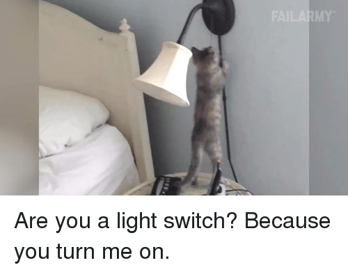 light switch: FAILARMY Are you a light switch? Because you turn me on.