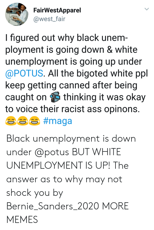 Canned: FairWestApparel  @west_fair  I figured out why black unem  ployment is going down & white  unemployment is going up under  @POTUS. All the bigoted white ppl  keep getting canned after being  caught on thinking it was okay  to voice their racist ass opinons Black unemployment is down under @potus BUT WHITE UNEMPLOYMENT IS UP! The answer as to why may not shock you by Bernie_Sanders_2020 MORE MEMES