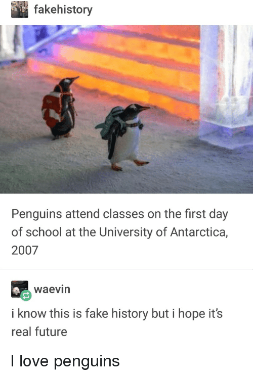 Fake, Future, and Love: fakehistory  Penguins attend classes on the first day  of school at the University of Antarctica,  2007  waevin  i know this is fake history but i hope it's  real future I love penguins