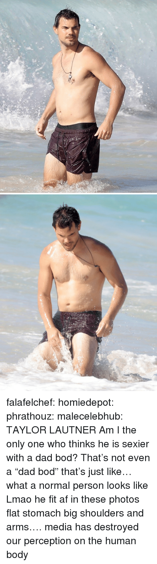 """am i the only: falafelchef:  homiedepot:  phrathouz:  malecelebhub:  TAYLOR LAUTNER  Am I the only one who thinks he is sexier with a dad bod?   That's not even a """"dad bod"""" that's just like… what a normal person looks like  Lmao he fit af in these photos flat stomach big shoulders and arms…. media has destroyed our perception on the human body"""
