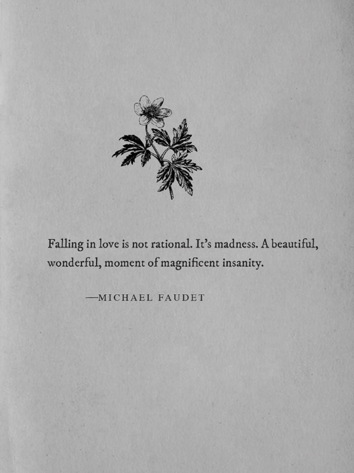 Insanity: Falling in love is not rational. It's madness. A beautiful,  wonderful, moment of magnificent insanity.  MICHAEL FAUDET