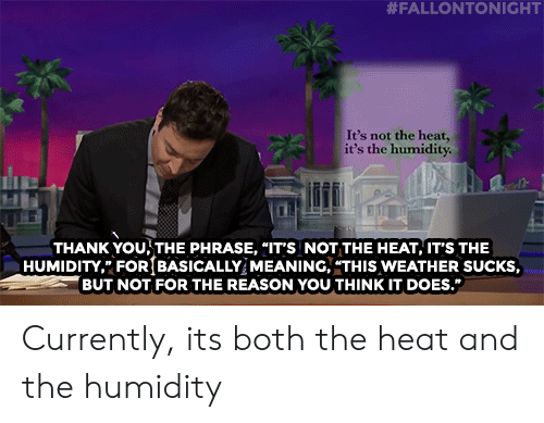 "Target, youtube.com, and Thank You:  #FALLONTONIGHT  It's not the heat,  it's the humidity  THANK YOU THE PHRASE, ""IT'S NOT THE HEAT, IT'S THE  HUMIDITY, FOR{BASICALLY MEANING, ""THIS WEATHER SUCKS,  BUT NOT FOR THE REASON YOU THINK IT DOES. Currently, its both the heat and the humidity"