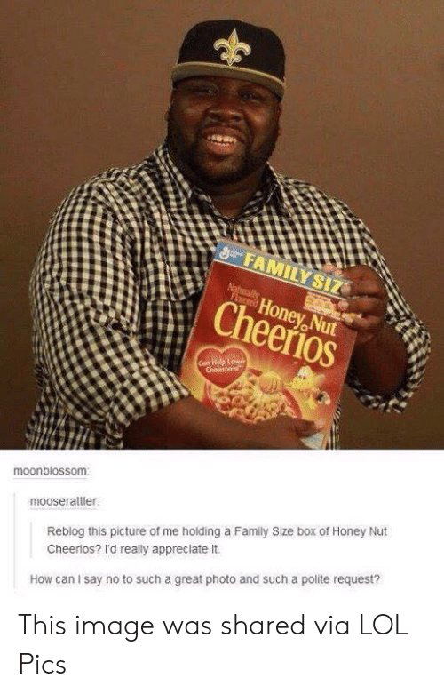 Family, Lol, and Cheerios: FAMILY SIZ  Naturally  FLored  Honey Nut  Cheerios  Can Help Lower  Cholesterol  moonblossom  mooserattler  Reblog this picture of me holding a Family Size box of Honey Nut  Cheerios? I'd really appreciate it.  How can I say no to such a great photo and such a polite request? This image was shared via LOL Pics