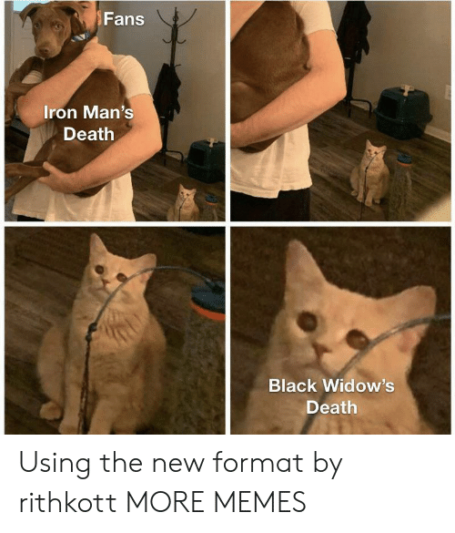 Dank, Memes, and Target: Fans  Iron Man's  Death  Black Widow's  Death Using the new format by rithkott MORE MEMES