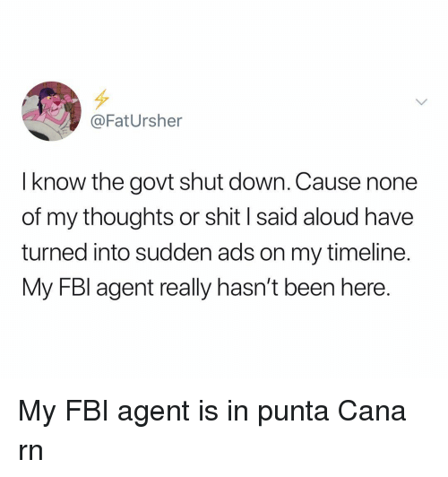 Fbi, Shit, and Dank Memes: @FatUrsher  I know the govt shut down. Cause none  of my thoughts or shit I said aloud have  turned into sudden ads on my timeline.  My FBl agent really hasn't been here. My FBI agent is in punta Cana rn