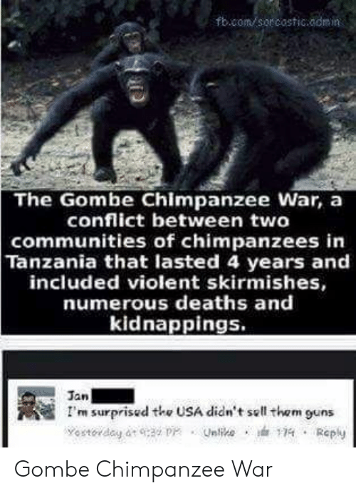 tanzania: fbcom sor costicaomin  The Gombe Chimpanzee War, a  conflict between two  communities of chimpanzees in  Tanzania that lasted 4 years and  included violent skirmishes,  numerous deaths and  kidnappings.  Jan  I'm surprisud the USA didn't sell them guns Gombe Chimpanzee War