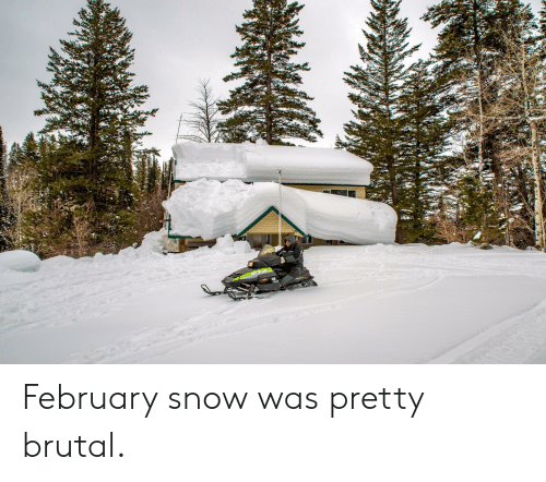 Pretty Brutal: February snow was pretty brutal.