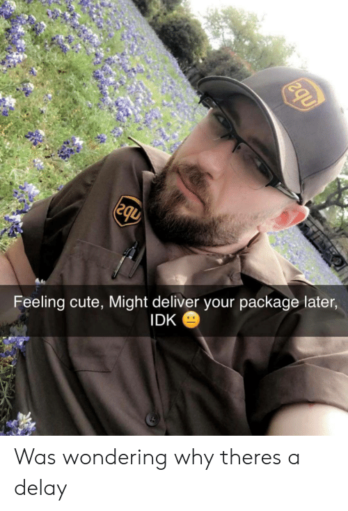 Cute, Why, and Delay: Feeling cute, Might deliver your package later  IDK Was wondering why theres a delay