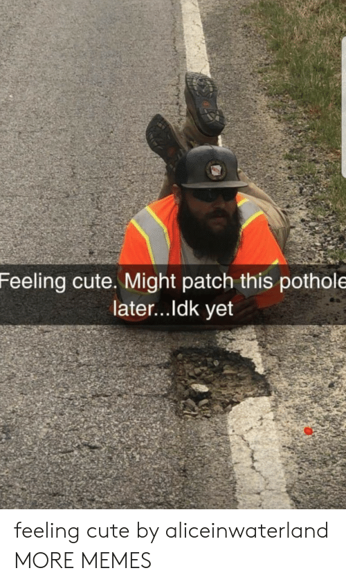 Ldk: Feeling cute. Might patch this pothole  later...ldk yet feeling cute by aliceinwaterland MORE MEMES