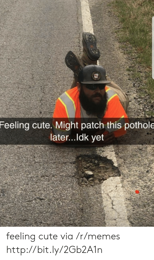 Ldk: Feeling cute. Might patch this pothole  later...ldk yet feeling cute via /r/memes http://bit.ly/2Gb2A1n