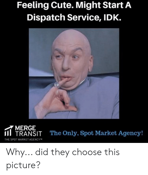 Cute, Start A, and Dispatch: Feeling Cute. Might Start A  Dispatch Service, IDK.  MERGE  II TRANSIT  The Only, Spot Market Agency!  THE SPOT MARKET AGENCYM Why... did they choose this picture?