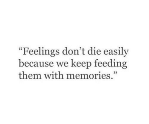 "Them, Memories, and Because: ""Feelings don't die easily  because we keep feeding  them with memories."""