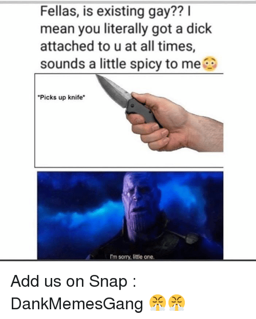 Memes, Sorry, and Dick: Fellas, is existing gay?? l  mean you literally got a dick  attached to u at all times,  sounds a little spicy to me  Picks up knife  I'm sorry, little one Add us on Snap :  DankMemesGang 😤😤
