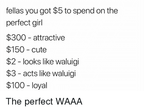 perfect girl: fellas you got $5 to spend on the  perfect girl  $300 attractive  $150 cute  $2 - looks like waluigi  $3 - acts like waluigi  $100 -loyal The perfect WAAA