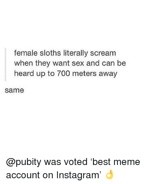 Instagram, Meme, and Memes: female sloths literally scream  when they want sex and can be  heard up to 700 meters away  same @pubity was voted 'best meme account on Instagram' 👌
