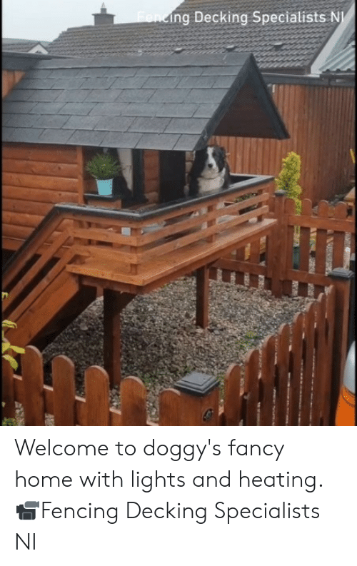 Dank, Fancy, and Home: Fending Decking Specialists N Welcome to doggy's fancy home with lights and heating.  📹Fencing Decking Specialists NI