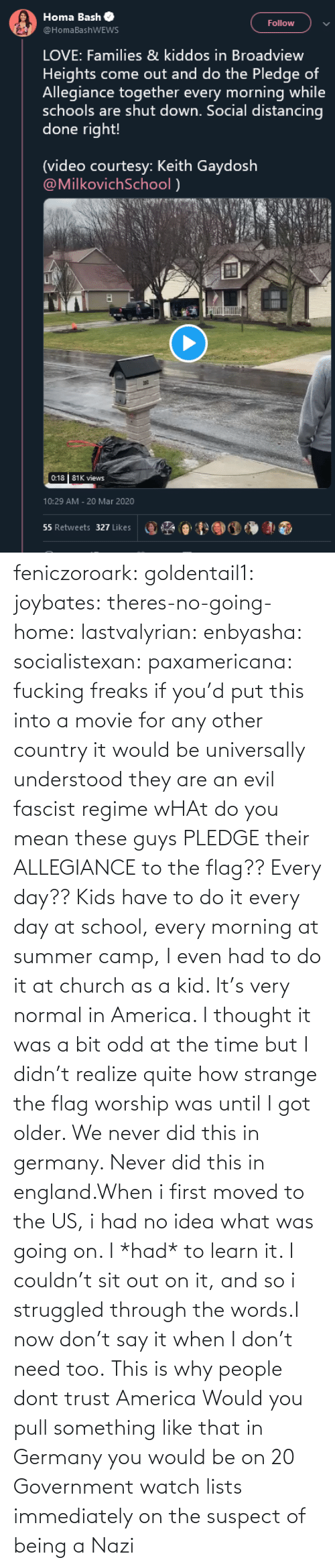 Being A: feniczoroark:  goldentail1:  joybates:  theres-no-going-home:  lastvalyrian:  enbyasha:  socialistexan:  paxamericana: fucking freaks       if you'd put this into a movie for any other country it would be universally understood they are an evil fascist regime    wHAt do you mean these guys PLEDGE their ALLEGIANCE to the flag?? Every day??   Kids have to do it every day at school, every morning at summer camp, I even had to do it at church as a kid. It's very normal in America. I thought it was a bit odd at the time but I didn't realize quite how strange the flag worship was until I got older.    We never did this in germany. Never did this in england.When i first moved to the US, i had no idea what was going on. I *had* to learn it. I couldn't sit out on it, and so i struggled through the words.I now don't say it when I don't need too.   This is why people dont trust America    Would you pull something like that in Germany you would be on 20 Government watch lists immediately on the suspect of being a Nazi