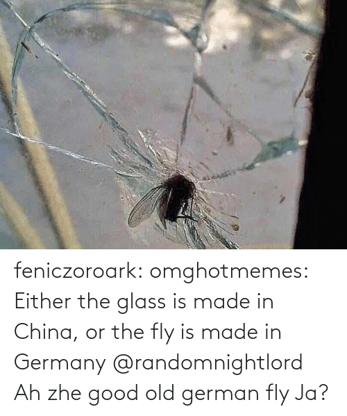 glass: feniczoroark:  omghotmemes:  Either the glass is made in China, or the fly is made in Germany   @randomnightlord    Ah zhe good old german fly Ja?