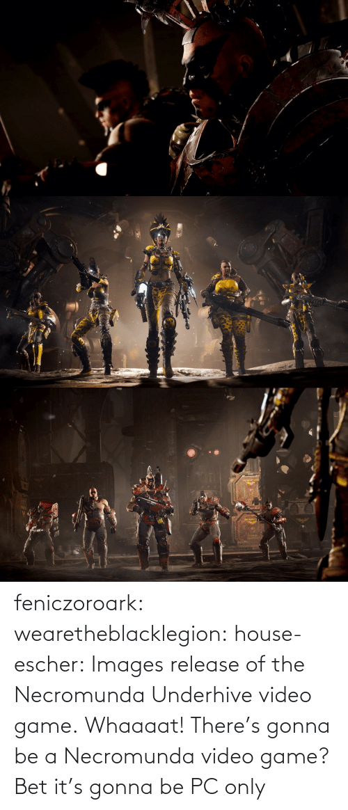 bet: feniczoroark:  wearetheblacklegion:  house-escher:  Images release of the Necromunda Underhive video game.   Whaaaat! There's gonna be a Necromunda video game?   Bet it's gonna be PC only