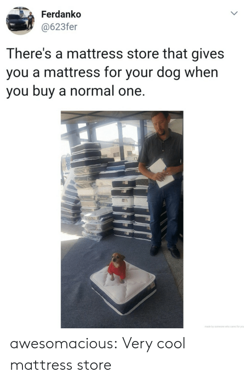 Tumblr, Blog, and Cool: Ferdanko  @623fer  LL  There's a mattress store that gives  you a mattress for your dog when  you buy a normal one.  made by someone who cares for you  > awesomacious:  Very cool mattress store