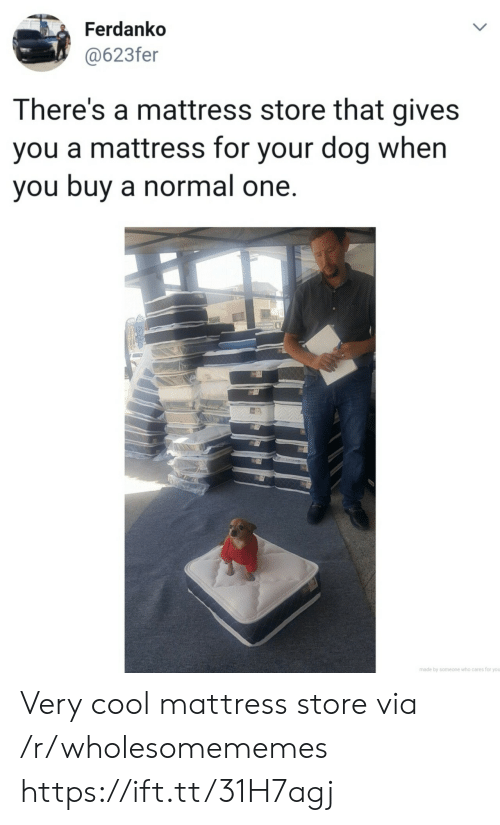 Cool, Mattress, and Dog: Ferdanko  @623fer  LL  There's a mattress store that gives  you a mattress for your dog when  you buy a normal one.  made by someone who cares for you  > Very cool mattress store via /r/wholesomememes https://ift.tt/31H7agj