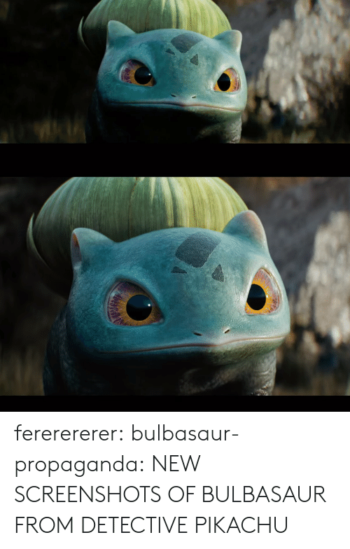 bulbasaur: fererererer:  bulbasaur-propaganda:  NEW SCREENSHOTS OF BULBASAUR FROM DETECTIVE PIKACHU