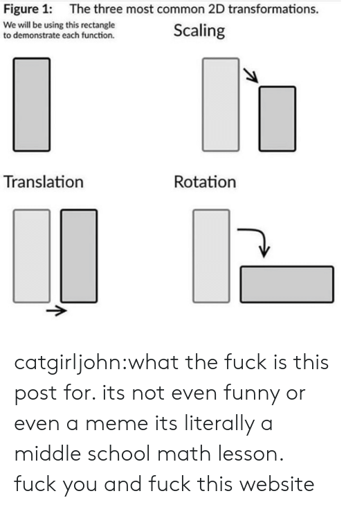 Most Common: Figure 1:  The three most common 2D transformations.  We will be using this rectangle  to demonstrate each function.  Scaling  Translation  Rotation catgirljohn:what the fuck is this post for. its not even funny or even a meme its literally a middle school math lesson. fuck you and fuck this website