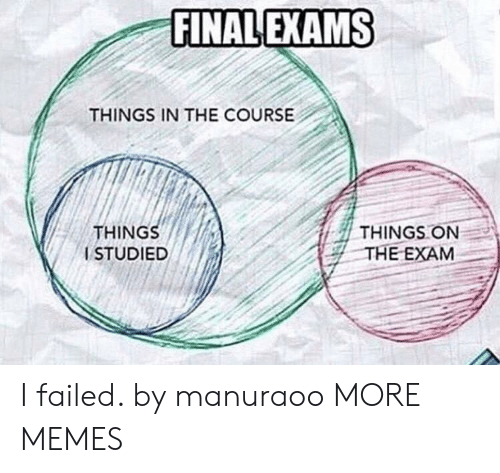 Dank, Memes, and Target: FINAL EXAMS  THINGS IN THE COURSE  THING  ISTUDIED  THINGS ON  THE EXAM I failed. by manuraoo MORE MEMES