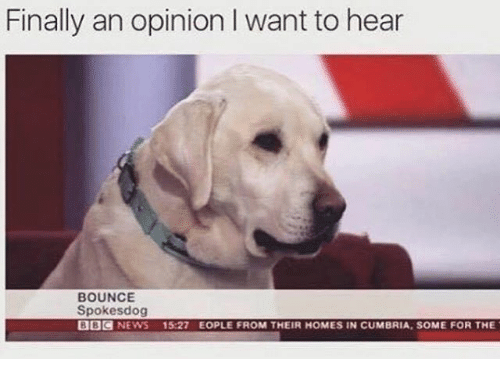 Opinionating: Finally an opinion I want to hear  BOUNCE  Spokes dog  BBC  NEWS  15:27 EOPLE FROM THEIR HOMES IN CUMBRIA, SOME FOR THE