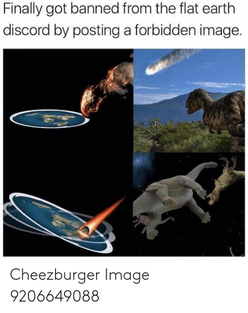 Flat Earth: Finally got banned from the flat earth  discord by posting a forbidden image. Cheezburger Image 9206649088