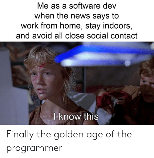 programmer: Finally the golden age of the programmer