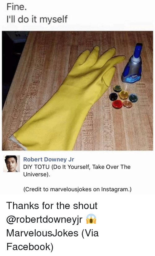 Facebook, Instagram, and Memes: Fine.  I'll do it myself  Robert Downey Jr  DIY TOTU (Do It Yourself, Take Over The  Universe)  (Credit to marvelousjokes on Instagram.) Thanks for the shout @robertdowneyjr 😱 MarvelousJokes (Via Facebook)