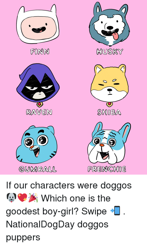 Finn, Memes, and Girl: FINN  HUSKY  RAVEN  SHIBA  GUMBALL  FRENCHIE If our characters were doggos 🐶💖🎉 Which one is the goodest boy-girl? Swipe 📲 . NationalDogDay doggos puppers