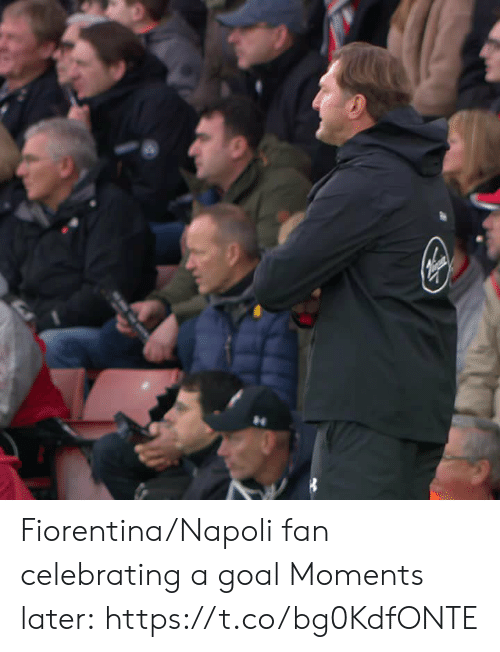 Memes, Goal, and 🤖: Fiorentina/Napoli fan celebrating a goal  Moments later:  https://t.co/bg0KdfONTE
