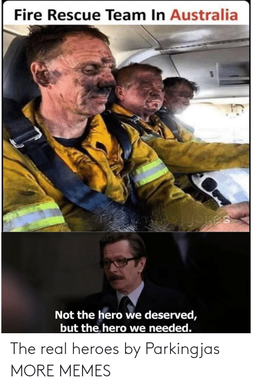 real: Fire Rescue Team In Australia  Not the hero we deserved,  but the. hero we needed. The real heroes by Parkingjas MORE MEMES