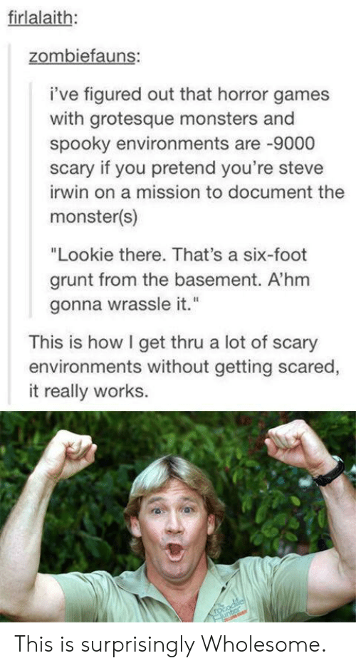 "Monster, Steve Irwin, and Games: firlalaith:  zombiefauns:  i've figured out that horror games  with grotesque monsters and  spooky environments are -9000  scary if you pretend you're steve  irwin on a mission to document the  monster(s)  ""Lookie there. That's a six-foot  grunt from the basement. A'hm  gonna wrassle it.""  This is how I get thru a lot of scary  environments without getting scared,  it really works.  rocodilcl  unter This is surprisingly Wholesome."